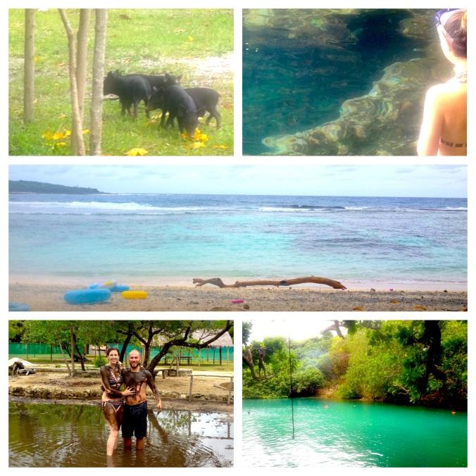 Little Piggies, Feeding the Fish, Eton Beach, Mud Pits and the Blue Lagoon